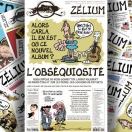 Quatrième de couverture, Zélium n°2, mars 2011