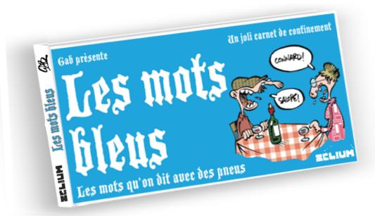 Couve MOTS BLEUS-LIVRE 3D_LogoZ
